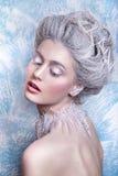 Śnieżna królowa Fantazi dziewczyny portret Zimy czarodziejki portret Młoda kobieta z kreatywnie srebnym artystycznym makijażem Zi Obrazy Royalty Free