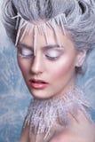 Śnieżna królowa Fantazi dziewczyny portret Zimy czarodziejki portret Młoda kobieta z kreatywnie srebnym artystycznym makijażem Zi Fotografia Royalty Free