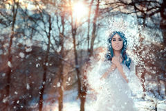Śnieżna królowa w zimy fantazi krajobrazie obraz stock