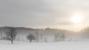 Śnieżna mgła zima, Sztokholm, Szwecja Zdjęcie Royalty Free