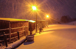 Śnieżna noc Zdjęcia Stock