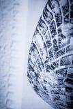 Śnieżna opona w zimie Obraz Royalty Free