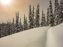 Śnieżna pogoń obrazy stock