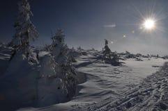 Śnieżna pustynia Obrazy Royalty Free