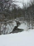 Śnieżna rzeka obrazy royalty free