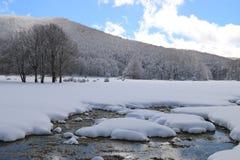 Śnieżna rzeka Zdjęcie Stock
