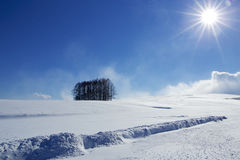Śnieżna scena w Japonia Zdjęcie Royalty Free