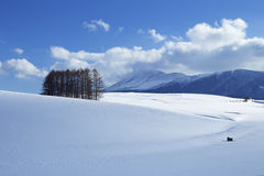 Śnieżna scena w Japonia Zdjęcia Stock