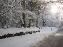 Śnieżna scena, zima w UK Obrazy Royalty Free