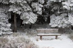 śnieżna scenerii zima Zdjęcia Stock