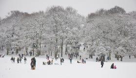 śnieżna sceny zima Zdjęcia Stock