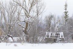 śnieżna sceny zima Obraz Stock