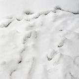 Śnieżna tło tekstura fotografia stock