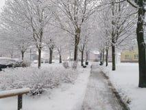Śnieżna ulica Fotografia Royalty Free