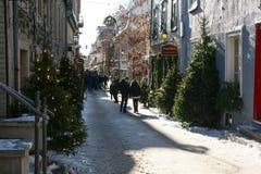 Śnieżna ulica w Historycznym śródmieściu Quebec miasto Obraz Royalty Free