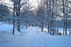 Śnieżna Vermont wiejska droga zdjęcie royalty free