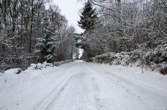 Śnieżna wiejska droga Obraz Royalty Free