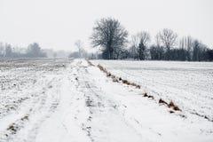 Śnieżna wsi droga w polach Zdjęcie Stock
