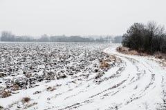 Śnieżna wsi droga w polach Zdjęcia Royalty Free