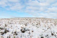 Śnieżna ziemia Fotografia Royalty Free