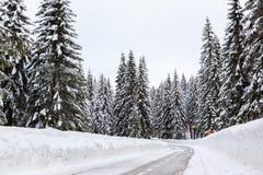 Śnieżna zimy droga obraz royalty free
