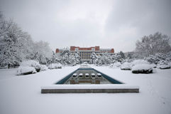 Śnieżna zimy scena USTC Obrazy Royalty Free