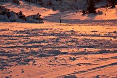 Śnieżna zmierzch scena w zimie zdjęcie royalty free