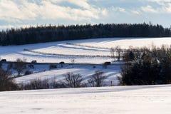 Śnieżne bariery blisko drogi w śnieżnym krajobrazie, ruch drogowy prognoza pogody Zdjęcia Stock