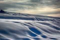 Śnieżne diuny Obraz Stock