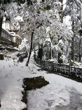 Śnieżne dmuchawy Obraz Stock