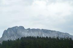 Śnieżne góry Gorbeia parka narodowego widoki Od Urigoiti Przez lasu Jedlinowi drzewa Natur gór krajobrazy Obraz Stock
