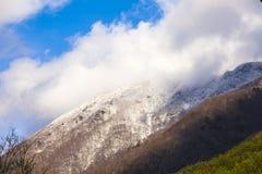 Śnieżne góry w Japonia Zdjęcia Royalty Free