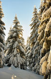 śnieżne krajobrazowe góry Obraz Royalty Free