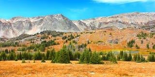 Śnieżne pasmo góry Wyoming obrazy royalty free