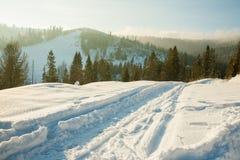 Śnieżne ranek góry Obraz Stock