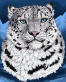 Śnieżnego lamparta portret Obrazy Stock