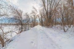 Śnieżnej mroźnej natury lasowa nożna ścieżka przez lasu w Minnestoa Va - przecinającego kraju narciarstwo, wycieczkujący, gruby o zdjęcie stock