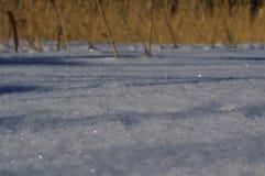 Śnieżni abstraktów szczegóły Zdjęcie Royalty Free