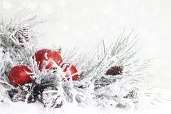 Śnieżni boże narodzenia Rozgałęziają się z ornamentami zdjęcia stock