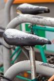 Śnieżni combery bicykle zdjęcia stock