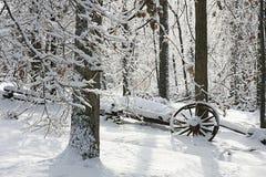 śnieżni drewna Obraz Stock