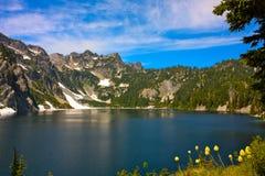 Śnieżni jezioro kwiaty Obrazy Stock