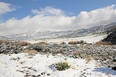 Śnieżni pola Zdjęcia Royalty Free