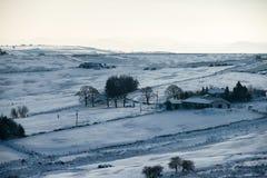 Śnieżni pola zdjęcia stock