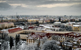 śnieżni Prague dachy Zdjęcie Royalty Free