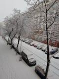 Śnieżni samochody obraz royalty free