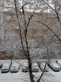 Śnieżni samochody zdjęcia stock