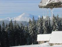Śnieżni szczyty Zdjęcia Stock