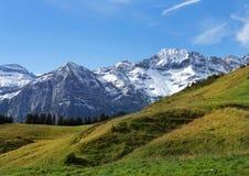 Śnieżni szczyty i zielone łąki w Szwajcarskich Alps obrazy royalty free