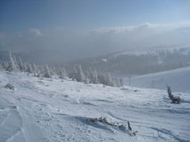 śnieżny światło słoneczne Obraz Stock